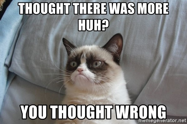 Grumpy cat 5 - Thought there was more huh? you thought wrong
