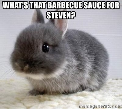 ADHD Bunny - What's that barbecue sauce for Steven?
