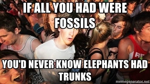 Sudden Realization Ralph - if all you had were fossils you'd never know elephants had trunks