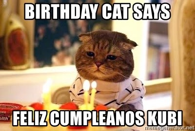 Birthday Cat - birthday cat says feliz cumpleanos Kubi
