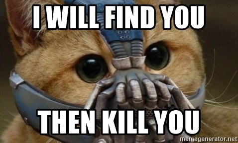 bane cat - I WILL FIND YOU THEN KILL YOU