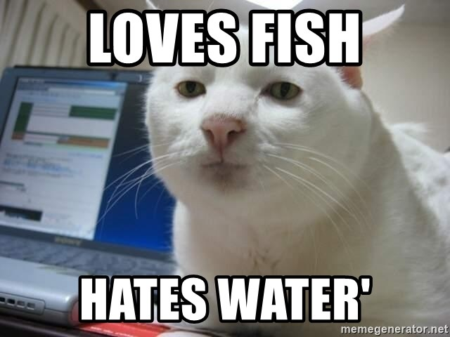 Serious Cat - LOVES FISH HATES WATER'