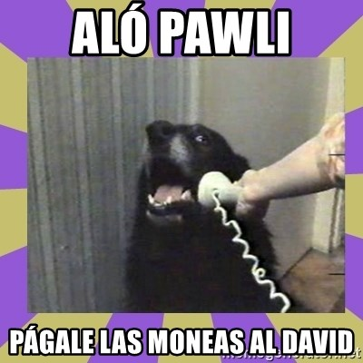 Yes, this is dog! - ALÓ PAWLI  PÁGALE LAS MONEAS AL DAVID