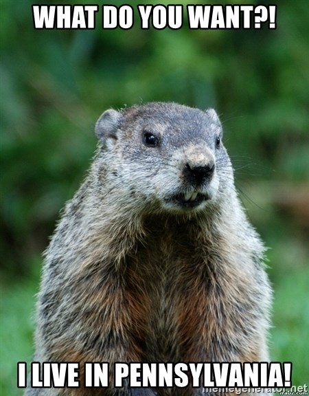 grumpy groundhog - What do you want?! I live in Pennsylvania!