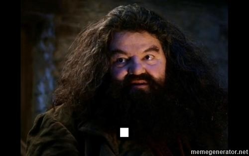 Yer A Wizard Harry Hagrid -  .
