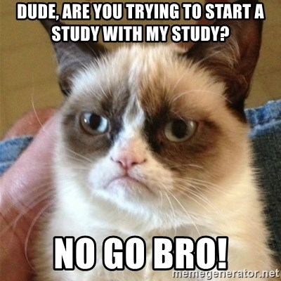 Grumpy Cat  - Dude, are you trying to start a study with my study? no go bro!