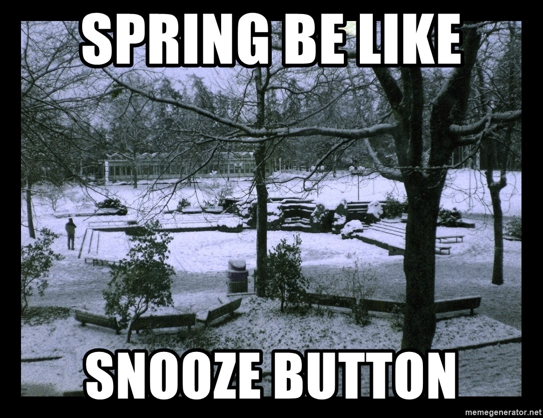 UVIC SNOWDAY - spring be like snooze button