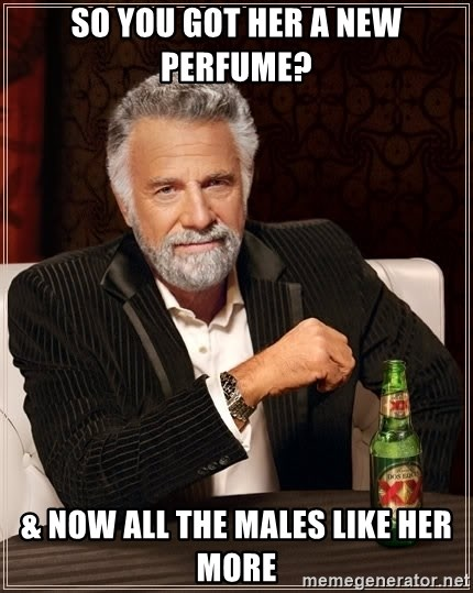 The Most Interesting Man In The World - so you got her a new perfume? & now all the males like her more