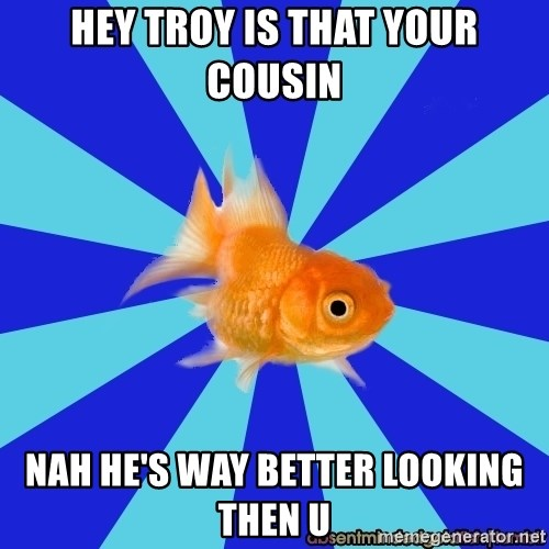 Absentminded Goldfish - HEY TROY IS THAT YOUR COUSIN NAH HE'S WAY BETTER LOOKING THEN U