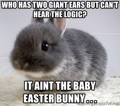 ADHD Bunny - Who has two giant ears but can't hear the logic? It aint the baby             easter bunnY . . .