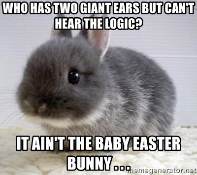 ADHD Bunny - who has two giant ears but can't hear the logic? it ain't the baby easter bunny . . .