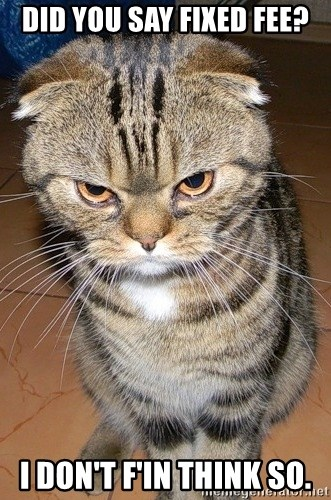 angry cat 2 - Did you say fixed fee? i don't f'in think so.