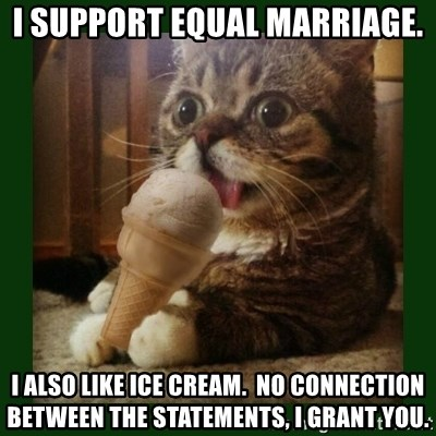 lil bub - I SUPPORT EQUAL MARRIAGE. I ALSO LIKE ICE CREAM.  NO CONNECTION BETWEEN THE STATEMENTS, I GRANT YOU.