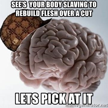 Scumbag Brain - See's  your body slaving to rebuild flesh over a cut Lets pick at it