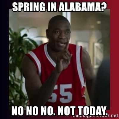 Dikembe Mutombo - Spring in Alabama? no no no. Not today.