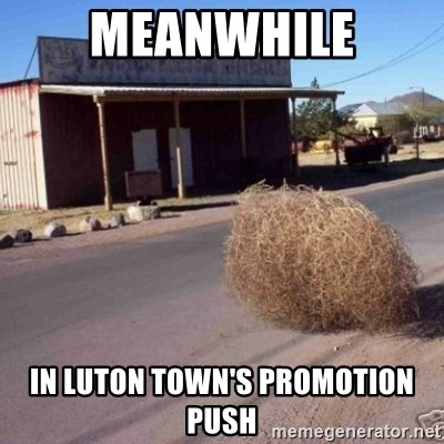Tumbleweed - MEANWHILE IN LUTON TOWN'S PROMOTION PUSH