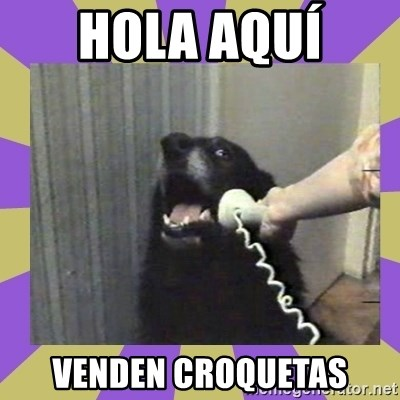 Yes, this is dog! - HOLA AQUÍ  VENDEN CROQUETAS