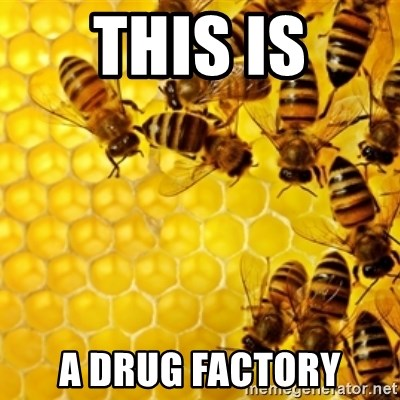 Honeybees - THIS IS A DRUG FACTORY