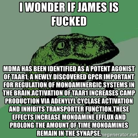 Philosoraptor - I wonder if james is fucked MDMA has been identified as a potent agonist of TAAR1, a newly discovered GPCR important for regulation of monoaminergic systems in the brain.Activation of TAAR1 increases cAMP production via adenylyl cyclase activation and inhibits transporter function.These effects increase monoamine efflux and prolong the amount of time monoamines remain in the synapse.