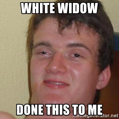 really high guy - WHITE WIDOW DONE THIS TO ME