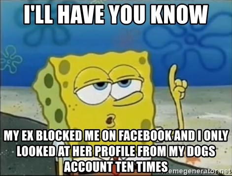 I'll have you know My ex blocked me on facebook and i only looked at