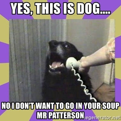 Yes, this is dog! - YES, THIS IS DOG.... NO I DON'T WANT TO GO IN YOUR SOUP MR PATTERSON