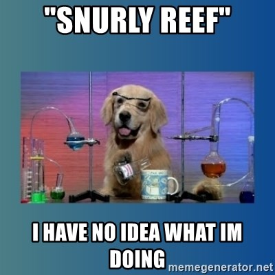 "Chemistry Dog - ""Snurly Reef"" I have no idea what im doing"