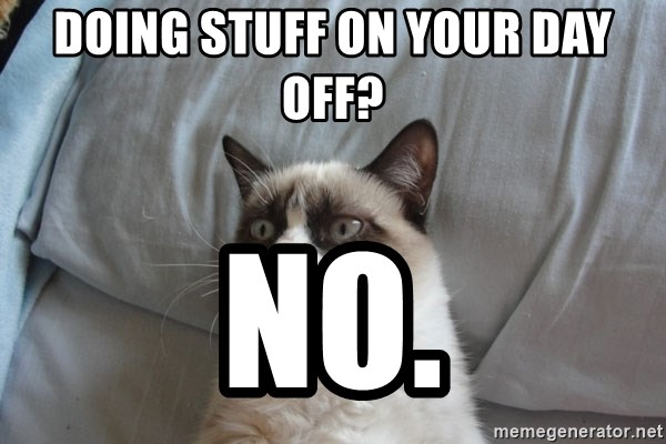 Grumpy cat 5 - Doing stuff on your day off? No.