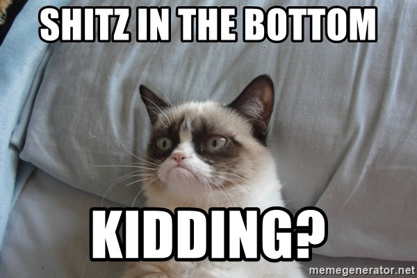 Grumpy cat 5 - SHITZ IN THE BOTTOM KIDDING?