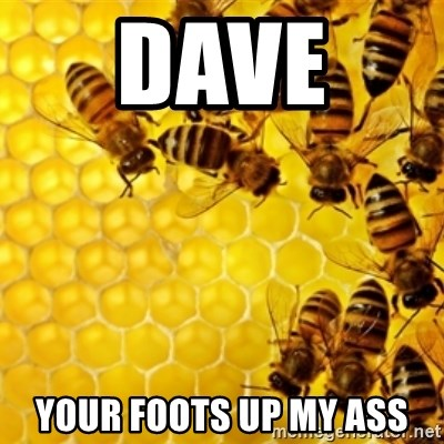 Honeybees - DAVE  YOUR FOOTS UP MY ASS