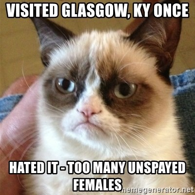 Grumpy Cat  - Visited Glasgow, KY once Hated it - too many unspayed females