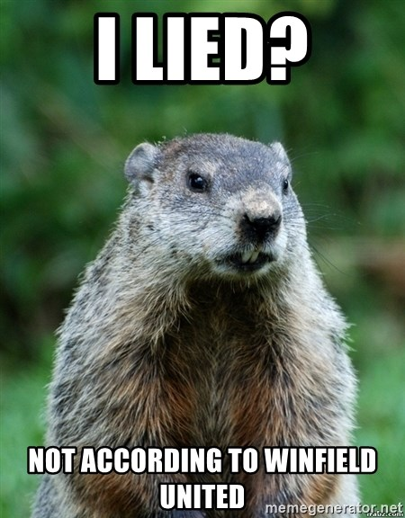 grumpy groundhog - i lied? not according to winfield united