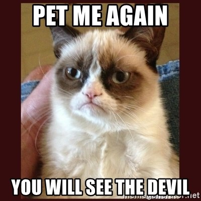 Tard the Grumpy Cat - Pet me Again  You will see the devIl