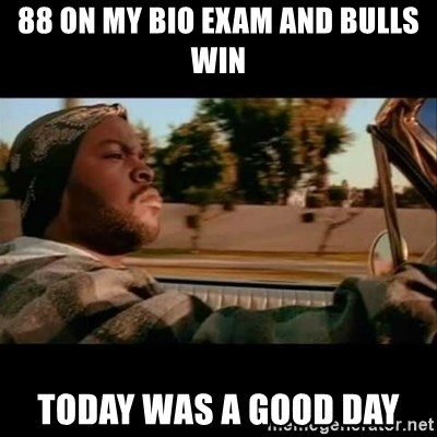 Ice Cube- Today was a Good day - 88 on my bio exam and bulls win today was a good day