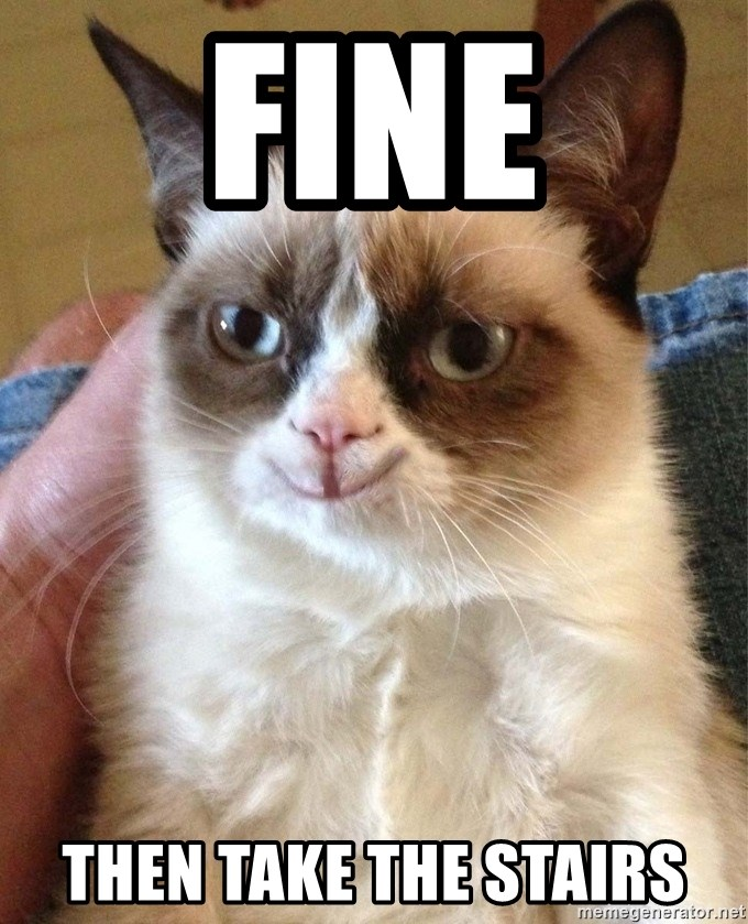 Happy Grumpy Cat 2 - fine then take the stairs