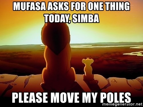 simba mufasa - Mufasa asks for one thing today, siMba Please move my poles