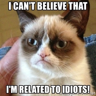 Grumpy Cat  - I can't believe that i'm related to idiots!
