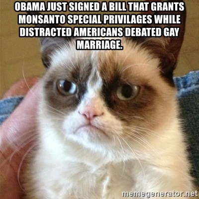 Grumpy Cat  - Obama just signed a bill that grants Monsanto special privilages while distracted Americans debated gay marriage.