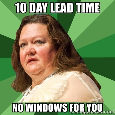 Dumb Whore Gina Rinehart - 10 day lead time No windows for you