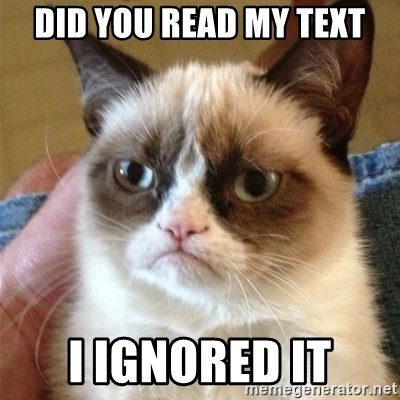 Grumpy Cat  - did you read my text i ignored it