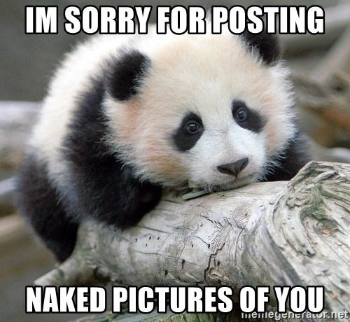 sad panda - im sorry for posting  naked pictures of you