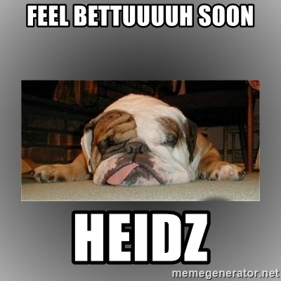 English Bulldog - Feel bettuuuuh soon Heidz