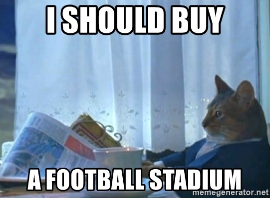 newspaper cat realization - i should buy a football stadium