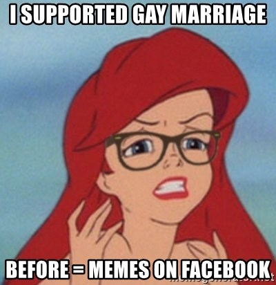Hipster Mermaid - I supported gay MARRIAGE Before = memes on facebook
