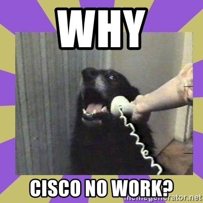 Yes, this is dog! - Why Cisco no work?
