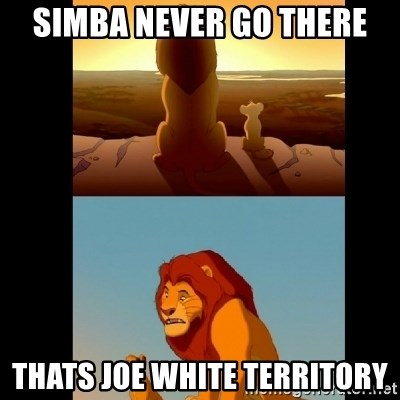 Lion King Shadowy Place - SIMBA NEVER GO THERE THATS JOE WHITE TERRITORY