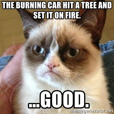 Grumpy Cat  - The burning car hit a tree and set it on fire.   …Good.