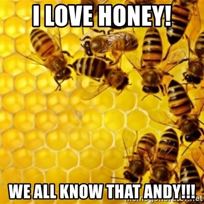 Honeybees - I LOVE HONEY! WE ALL KNOW THAT ANDY!!!