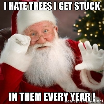 Santa claus - I HATE TREES I GET STUCK  IN THEM EVERY YEAR !