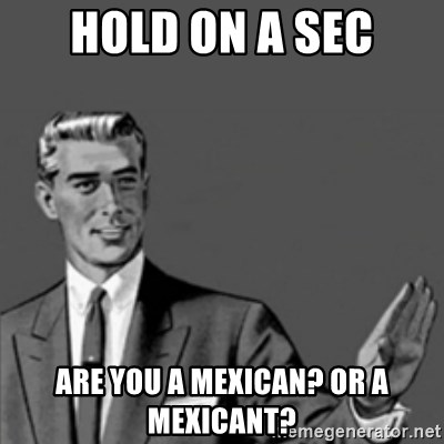 Correction Guy - HOLD ON A SEC ARE YOU A MEXICAN? OR A MEXICANT?